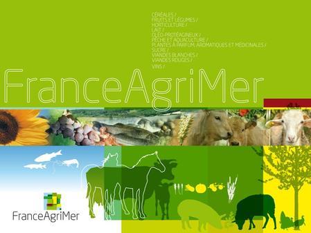 Observatoire des prix et des marges 14 novembre 2011 Groupe de travail produits laitiers.