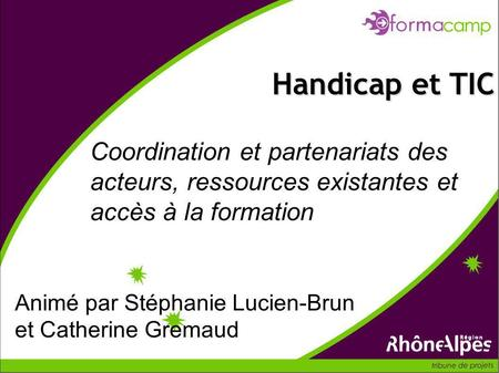 Coordination et partenariats des acteurs, ressources existantes et accès à la formation Handicap et TIC Animé par Stéphanie Lucien-Brun et Catherine Gremaud.