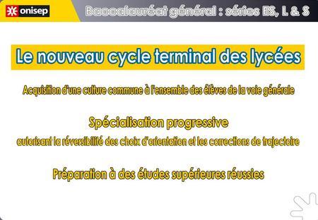 Figures de style F(x 2 )+xy 2 xy+F(y 2 ) Acquisition dune culture commune à lensemble des élèves de la voie générale Début de spécialisation 60% de lhoraire.