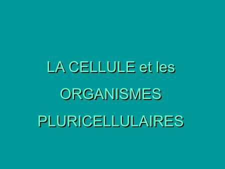 LA CELLULE et les ORGANISMES PLURICELLULAIRES.
