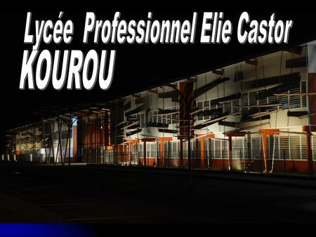 La voie professionnelle Lycée Elie Castor Le lycée professionnel Seconde professionnelle première première terminale terminale Études longues Term professionnelle.