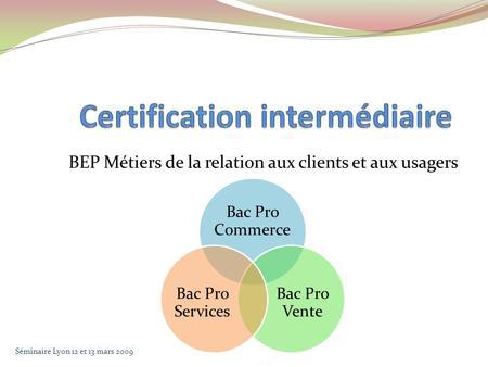 BEP Métiers de la relation aux clients et aux usagers Bac Pro Commerce Bac Pro Vente Bac Pro Services Séminaire Lyon 12 et 13 mars 2009.