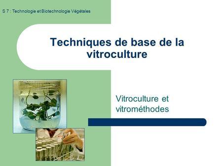 Techniques de base de la vitroculture